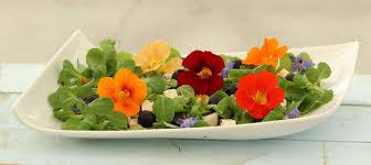 salade-oi-kers